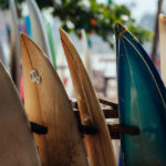 The 10 Best Surfing Lessons & Surfing Schools In San Diego